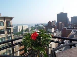 Ottawa's Hot Real Estate Market for 2019!